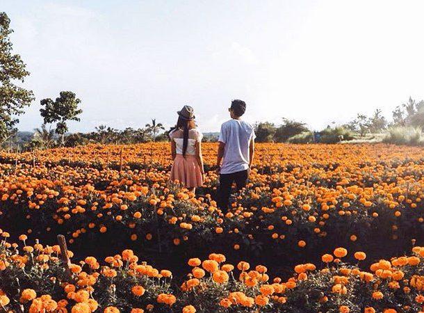 5 Objek Wisata di Bali yang Instagramable & Paling Hits
